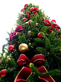 200px-Christmas_tree_sxc_hu.jpg